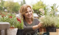 Self-Guided Therapy Improves Menopause Symptoms: Study