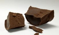 Why You Should Not Feed Chocolate to Dogs