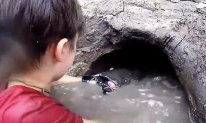 Boy sticks both his arms into a hole in a mudbank. But what he pulls out from there—It's crazy