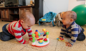 When familiar song starts playing, these adorable twin babies immediately break out the dance moves