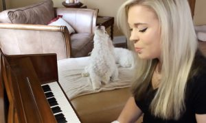 Girl tries to beatbox and play the piano at the same time—but her cute dog insists on joining in