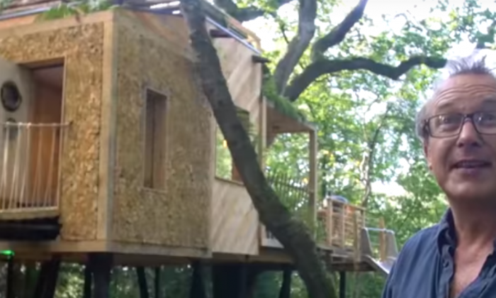 It looks like a regular treehouse but honestly one look inside—I want to live in there