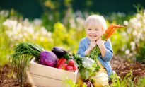 The Difference Between Heirlooms, Hybrids, GMOS, and Gene Editing