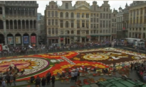 Mexican Theme as 500,000 Flowers Decorate Brussels' Grand Place