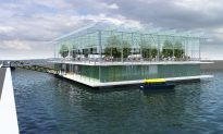 The World's First Floating Farm in Rotterdam